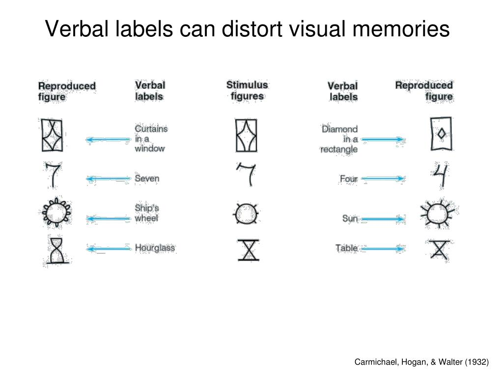 Verbal labels can distort visual memories