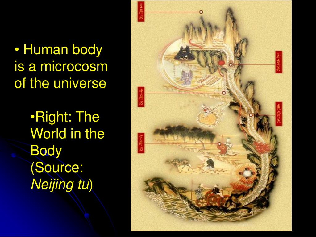 Human body is a microcosm of the universe