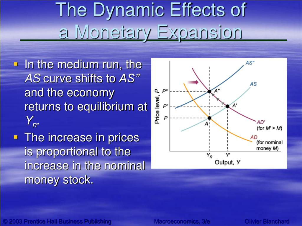 The Dynamic Effects of