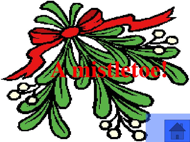A mistletoe!