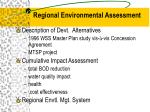 regional environmental assessment9