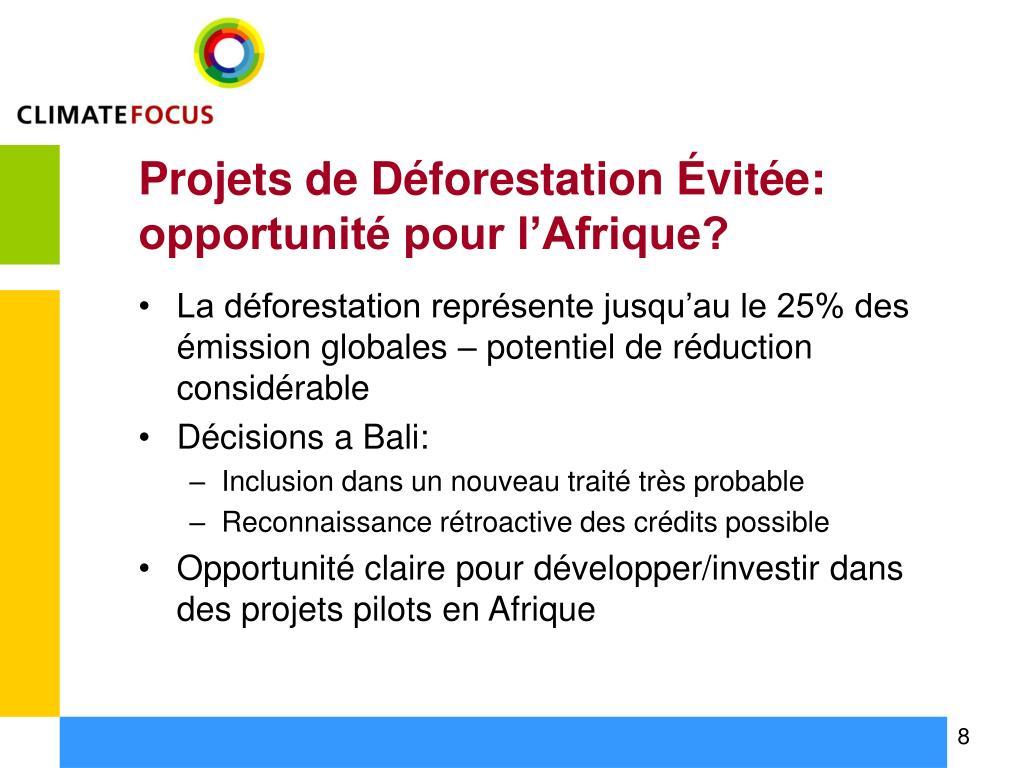 Projets de Déforestation Évitée: opportunité pour l'Afrique?