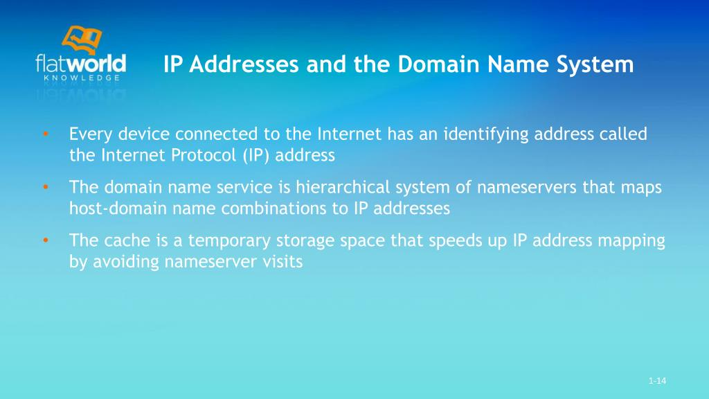 IP Addresses and the Domain Name System