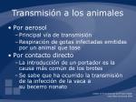 transmisi n a los animales
