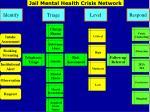 jail mental health crisis network