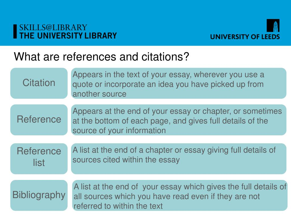 What are references and citations?