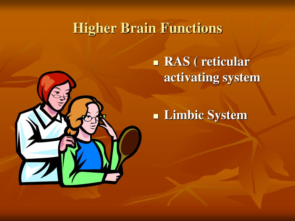 Higher Brain Functions