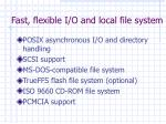 fast flexible i o and local file system