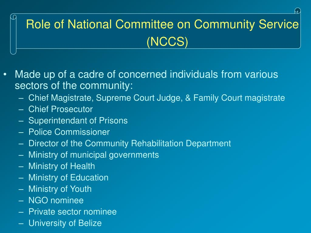 Role of National Committee on Community Service