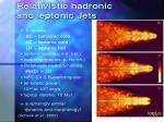 relativistic hadronic and leptonic jets