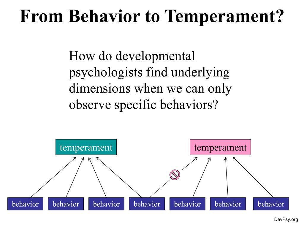 from behavior to temperament l.