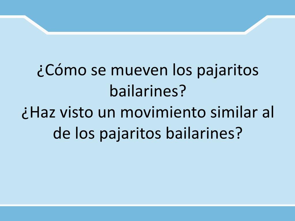 ¿Cómo se mueven los pajaritos bailarines?