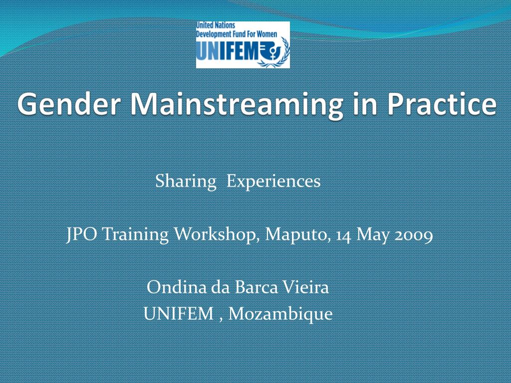 gender mainstreaming in practice l.