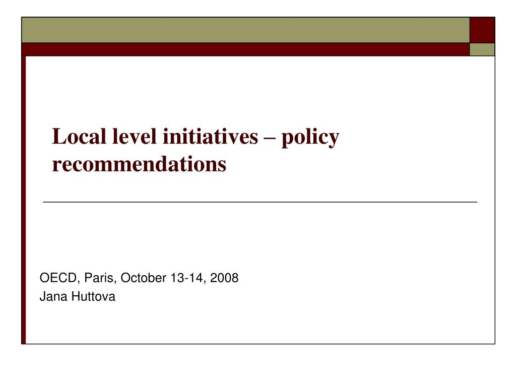 local level initiatives policy recommendations l.