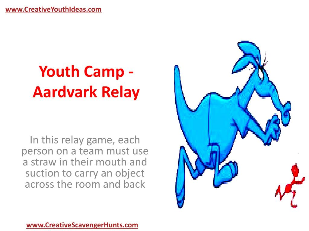 youth camp aardvark relay