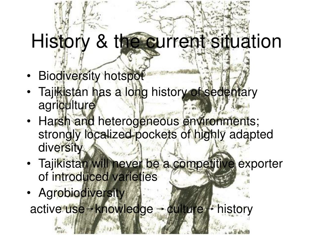 History & the current situation