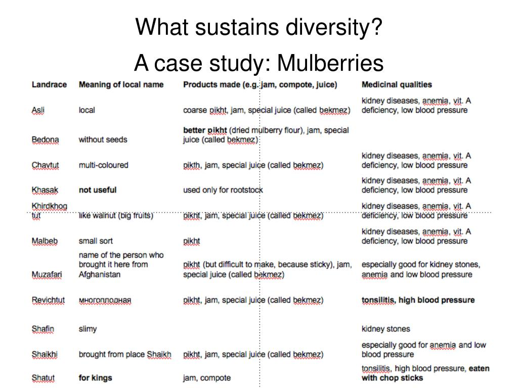 What sustains diversity?