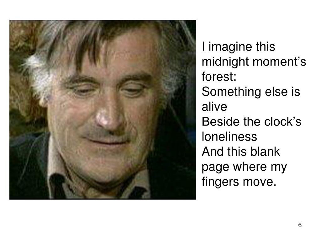 I imagine this midnight moment's forest: