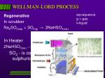 wellman lord process