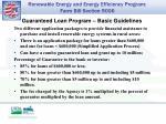 guaranteed loan program basic guidelines