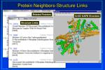 protein neighbors structure links