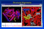 structural alignments