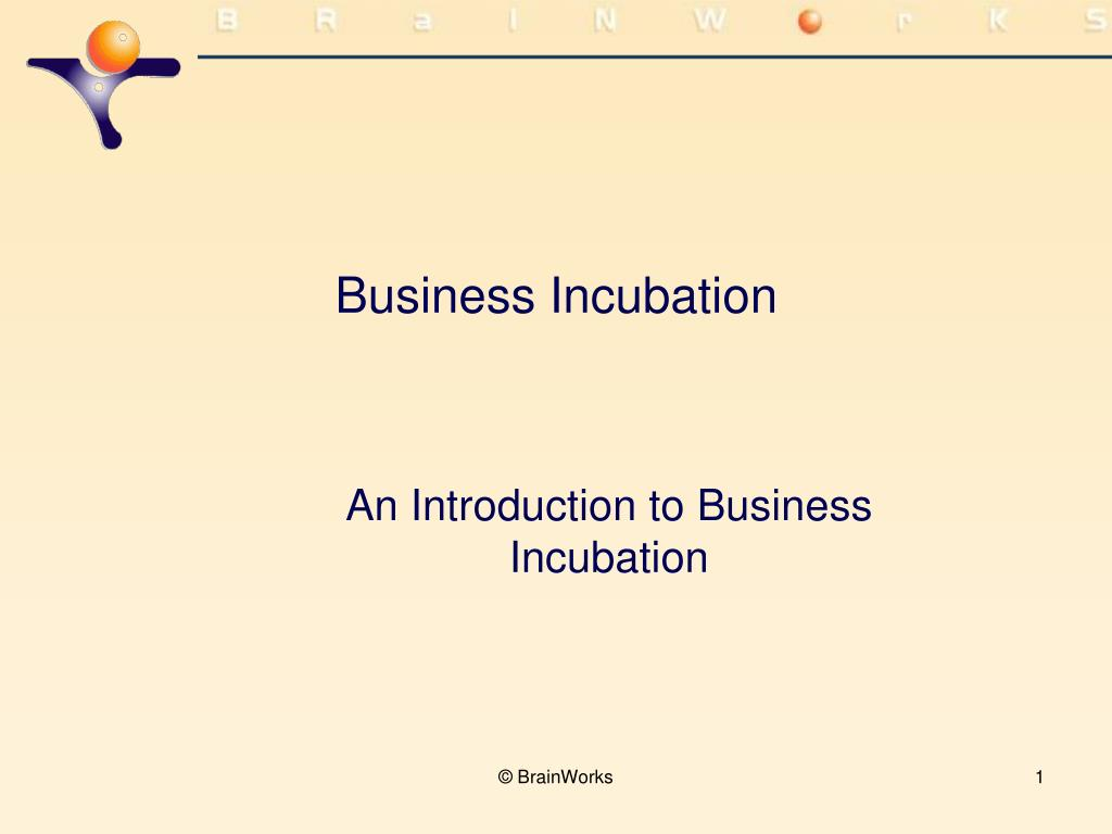 business incubation l.