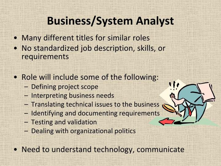 Business/System Analyst