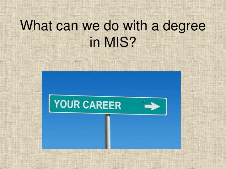 What can we do with a degree in MIS?