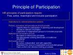 principle of participation