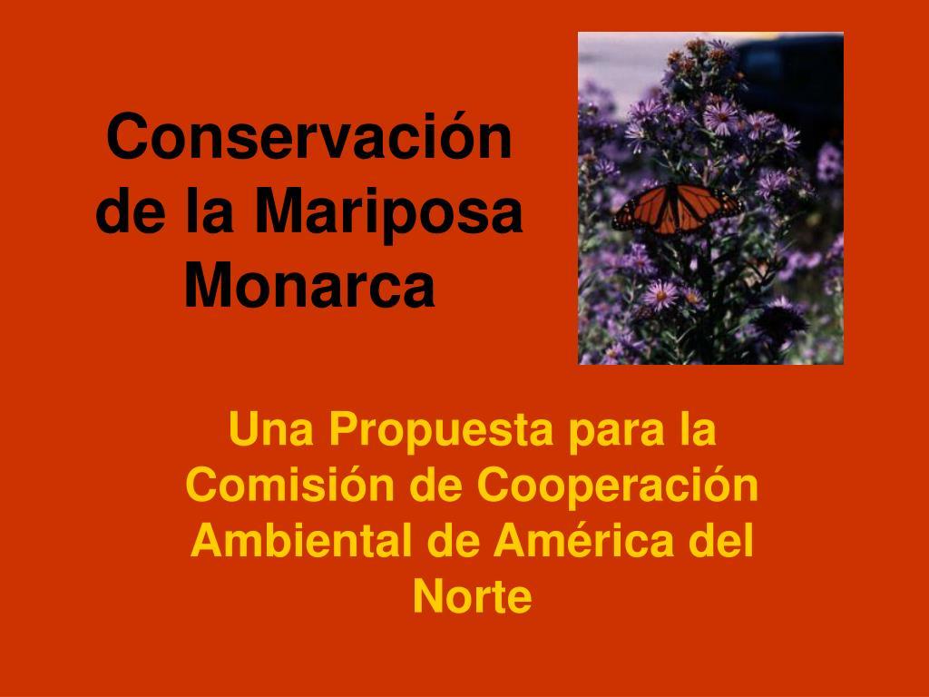conservaci n de la mariposa monarca l.