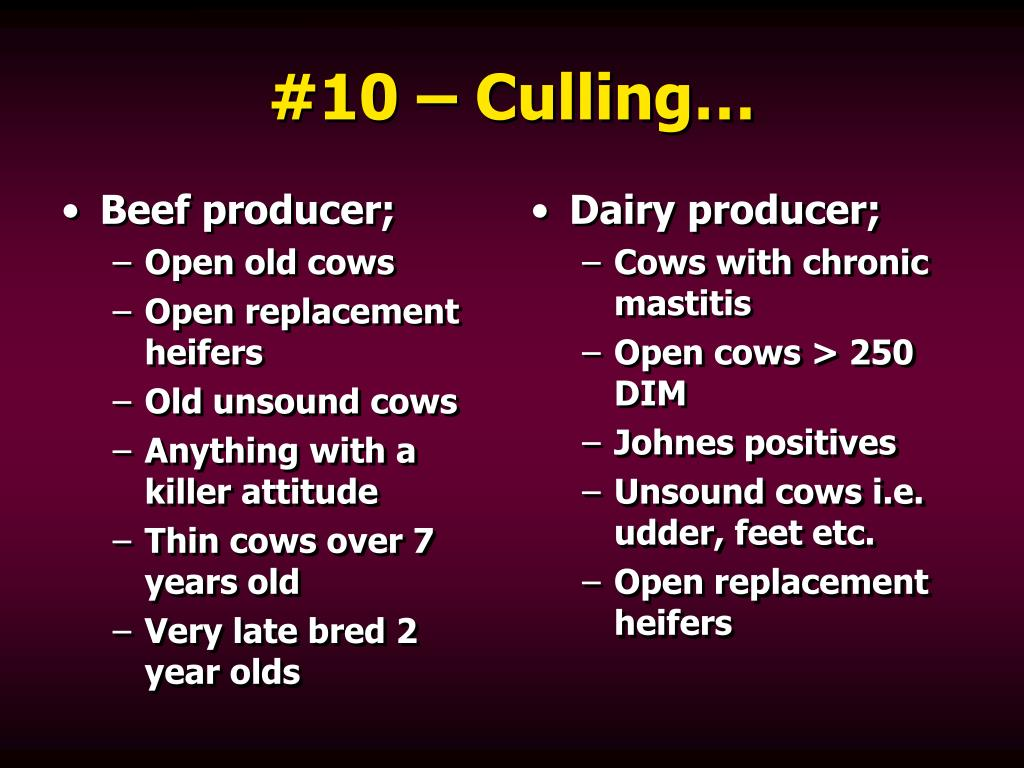 Beef producer;