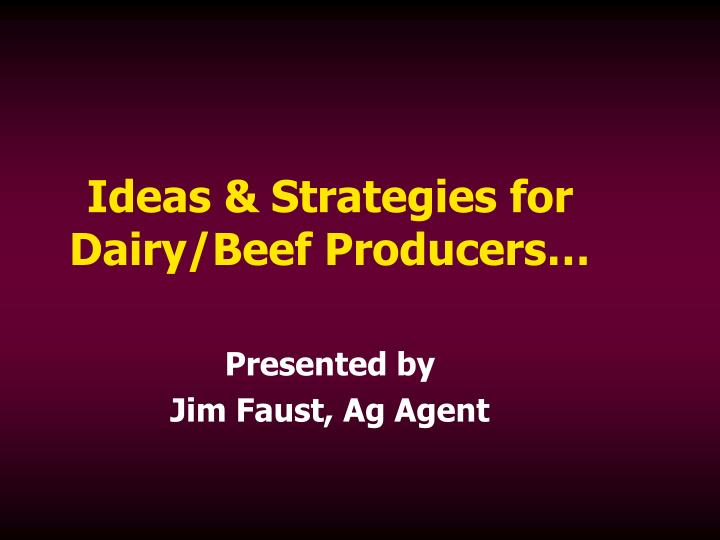 Ideas strategies for dairy beef producers