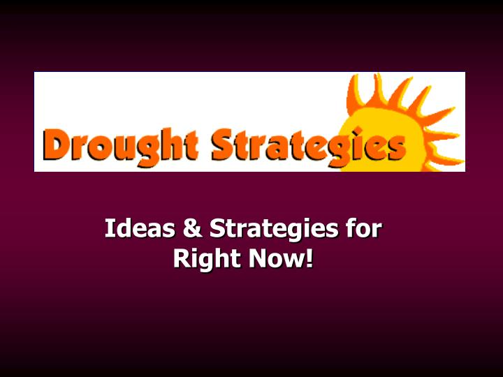 Ideas strategies for right now