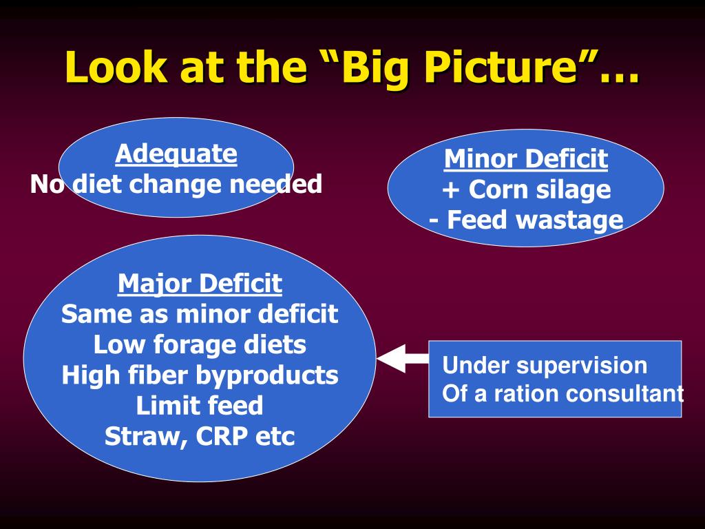 "Look at the ""Big Picture""…"