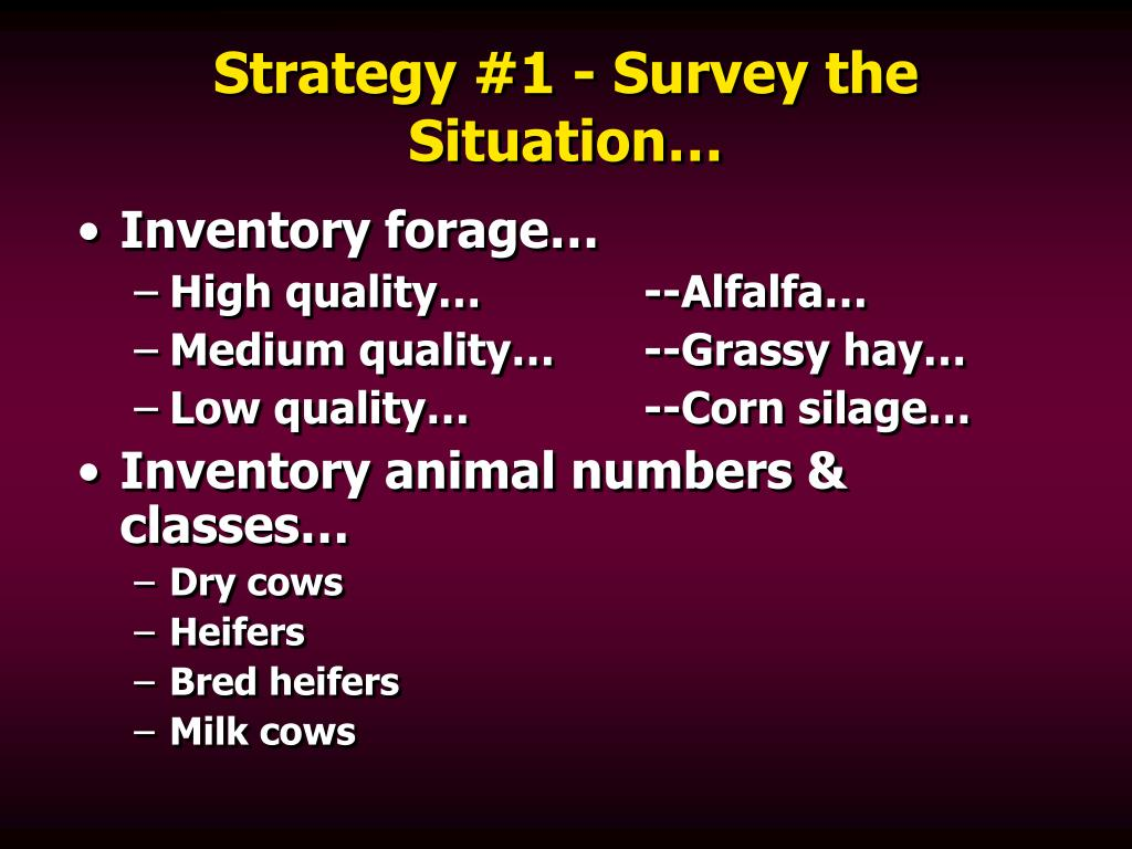 Strategy #1 - Survey the Situation…