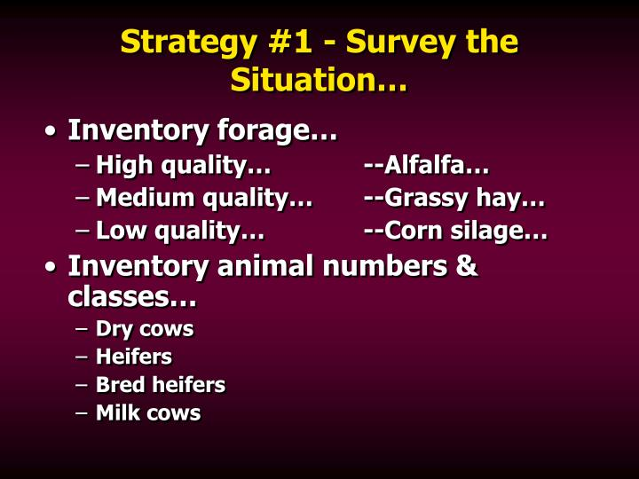 Strategy 1 survey the situation