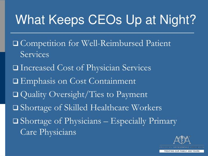 What Keeps CEOs Up at Night?