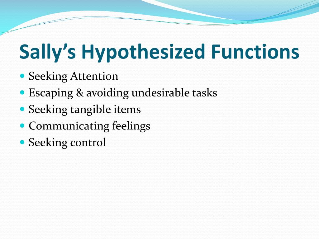 Sally's Hypothesized Functions