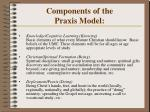 components of the praxis model