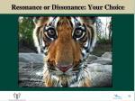 resonance or dissonance your choice