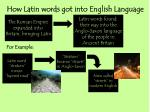 how latin words got into english language13