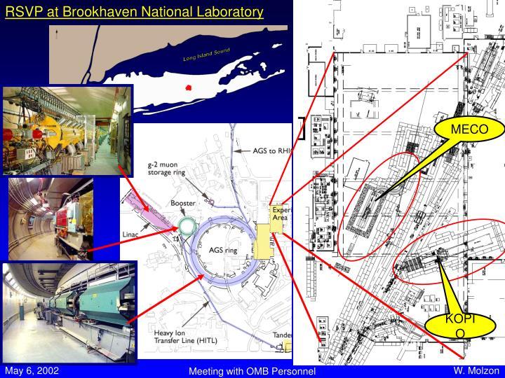 RSVP at Brookhaven National Laboratory
