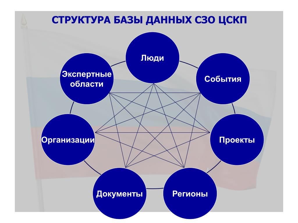 Структура Базы данных СЗО ЦСКП