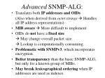advanced snmp alg