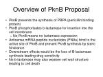 overview of pknb proposal