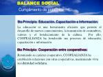 balance social cumplimiento de principios10