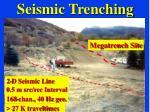 seismic trenching