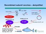 recombinant subunit vaccines demystified