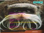 information bibliograghy